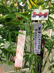 Monogatari2nd_tanabata3