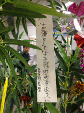 Monogatari2nd_tanabata7