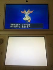 Pokemony_03